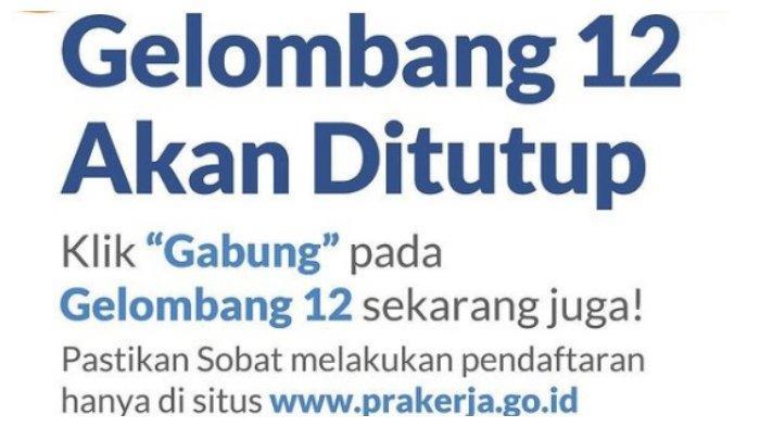 Kapan Pengumuman Kartu Prakerja Gelombang 12? Ini Cara Cek Lolos atau Tidak di www.prakerja.go.id